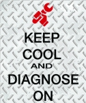 Keep cool and diagnose on!